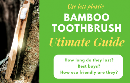 Bamboo Toothbrush Guide featured image