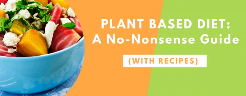 Plant Based Diet Guide blog post image