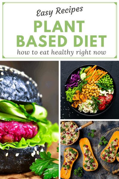 plant based diet easy recipes